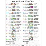 The English Alphabet (Alfabet) - Plansza dwustronna 2 w 1